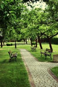 Dom weselny Radom, ogród