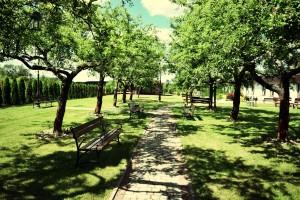 Dom weselny Radom, ogród  2